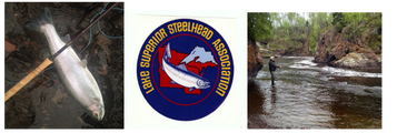 <br /><br />Lake Superior Steelhead Association